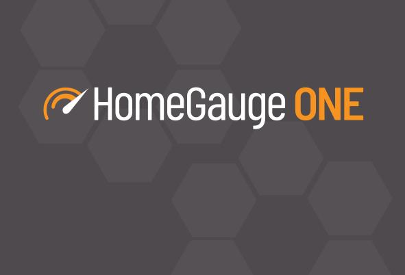 HomeGauge-ONE